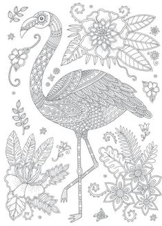 flamingo color pages. When you mention the name flamingo, everyone will know that this is a bird with an S-shaped neck and has a graceful style that is popular and beautifu. Flamingo Coloring Page, Bird Coloring Pages, Adult Coloring Book Pages, Doodle Coloring, Colouring Pics, Coloring Sheets, Coloring Books, Free Adult Coloring, Flamingo Art