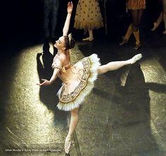 """Gillian Murphy """"Sylvia"""" American Ballet Theatre"""