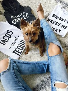 graphic tees, graphic tshirts, graphic shirts, tacos and tequila, whiskey, coffee, how to style your graphic tee, dogs, puppy, dog of the day