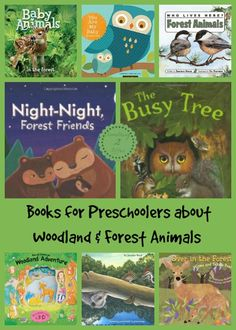 Sticking with our learning about Woodland and Forest Animals I have created a list of 10 books for preschoolers.