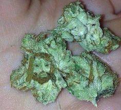 Jeesus is my bud #budcity #budporn #marijuanaporn #marijuanaphotosubmission #instagood #insta #photooftheday #weed #cannabis #green