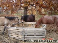 HorseAdvice.com Equine & Horse Advice: Round bale Feeder opinions