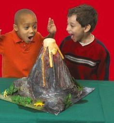 Best grade school science project