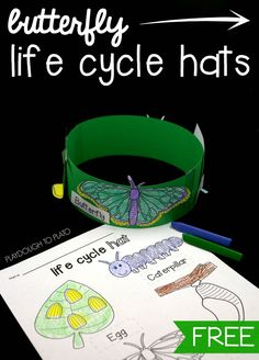 Butterfly Life Cycle Hats What an awesome science activity for preschool or kindergarten! Make butterfly life cycle hats. Definitely doing this craft and science project in one. Preschool Science, Science For Kids, Science Classroom, Earth Science, April Preschool, Summer Science, Science Crafts, Science Fun, Science Ideas