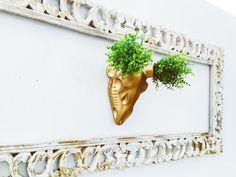 CrimsonCardiac - Blog  #planter #gold #deerskull #homedecor