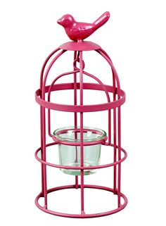 A Loja do Gato Preto | Lanterna pássaro rosa #alojadogatopreto