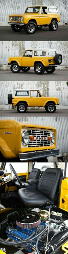 Mellow Yellow Bronco
