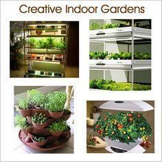 Indoor Veggie Garden Grow an indoor kitchen garden indoor vegetable gardening grow indoor vegetable gardening workwithnaturefo