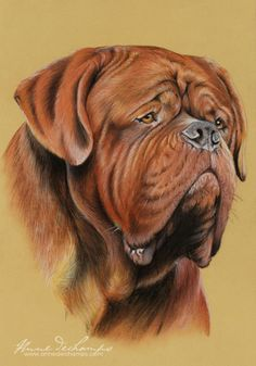 Balrog - #Dogue de Bordeaux