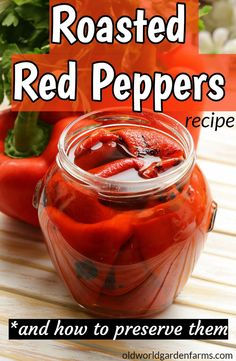 Roasted Red Pepper Recipe - And How To Preserve Them! Marinated and Roasted Red Peppers recipe - including how to preserve them!Marinated and Roasted Red Peppers recipe - including how to preserve them! Home Canning Recipes, Cooking Recipes, Healthy Recipes, Canning Tips, Pressure Canning Recipes, Game Recipes, Cooking Food, Red Pepper Recipes, Recipes With Red Peppers