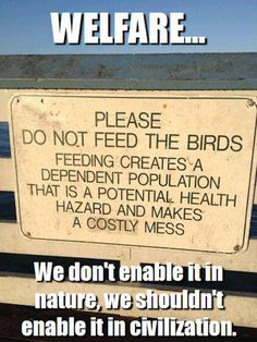 Welfare... Good enough for humanity, but not good enough for the birds. Thank a libtard! If you are of able mind and able body, and you choose not to work, you deserve to starve to death. Liberals, please choose a different defense before trolling my posts with emotional responses about the poor kids and old people. We're talking about welfare leeches here. Not people who actually need assistance.