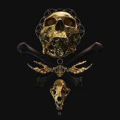 "socialpsychopathblr: ""By Billy Bogiatzoglou "" Rendering Art, Dark Beauty Magazine, Gold Aesthetic, Religious Symbols, Vanitas, Character Aesthetic, Gothic Art, Skull Art, Art Studios"