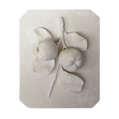 plaster relief | Vintage Plaster Fruit Relief at 1stdibs