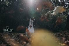 Tom Halliday Photography - Wedding Photography UK - Bride Portraits - Groom Portraits - Bridesmaids - Best Man - Country Wedding - Landscape Photography - Wedding Ring - Country House Wedding - Kiss - Autumn Wedding - Bouquet - Summer Wedding - Winter Wedding - Spring Wedding - Barn Wedding - Vintage Wedding - Daytime Wedding Photography - Nightime Wedding Photography - Stars - Fireworks - Bouquet