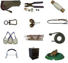 Glove, jesses, creance, vest, bells, leash, swivels, giant hood, bath