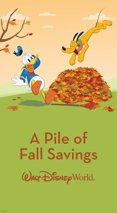 You can save up to 25% on rooms at select Walt Disney World Resort hotels this fall! For stays most nights 10/11-10/15, 10/18-10/22, 11/1-11/7, 11/22-11/24 and 11/28-12/23/15. Other great savings also available for stays most nights 10/4-11/24 and 11/28-12/23/15. Book between 7/20 and 9/18/15.