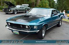 Image detail for -Gulfstream Aqua 1969 Mach 1 Ford Mustang Fastback - MustangAttitude . 1969 Mustang Fastback, 2012 Mustang, Mustang Boss, Classic Mustang, Shelby Gt500, Pony Car, Ford Gt, Mustangs, Hot Cars