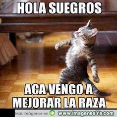 hola+suegros