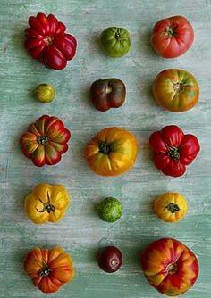 15 = 5 x 3 Heirloom tomatoes Fruit And Veg, Fruits And Veggies, Fresh Fruit, Food Photography Styling, Food Styling, Heirloom Tomatoes, Roasted Tomatoes, Fruit Recipes, Food Design