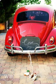 love bug! better than slug bug!