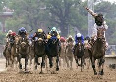 'Mine The Bird' long Shot Wins Kentucky Derby 2009 Skiing In Japan, Courses Hippiques, Nascar Champions, Derby Winners, Baseball Park, Run For The Roses, Racing News, Derby Day, Long Shot
