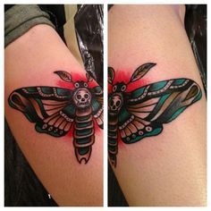 death head moth traditional moth - Google Search