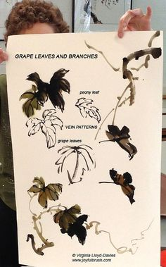 Chinese brush painting of grape leaves