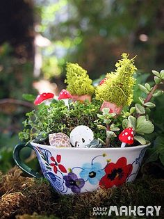 Perfect to give as a gift on Mother's Day, these magical fairy gardens are too cute not to showcase.