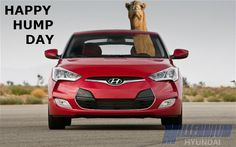 HAPPY #HYUNDAI HUMP DAY! #HumpDay #Veloster