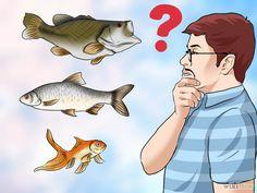 Resultado de imagen de peces de agua dulce comestibles+Portugal