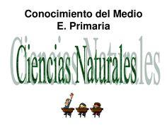 C. Medio  LAS PLANTAS Tercer ciclo E. Primaria by María José Martínez Baños via slideshare