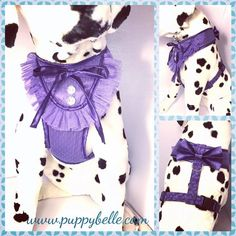 Let the sewing commence❣️ We had fun playing with lace and satin to make this girly harness!  #pets#dogs#cats#birds#rabbits#lovablepets