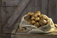 Boiled German Potatoes Cooking Guide