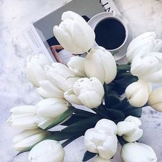 Image de flowers and beautiful