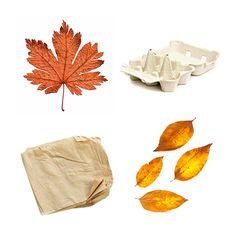 add a variety of compostable material