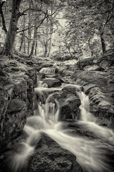 Monochrome Shankill river, just outside the village of Manor Kilbride, Co Wicklow, Ireland Monochrome Photography, Family History, Ireland, The Outsiders, Waterfall, Landscapes, River, Artwork, Outdoor