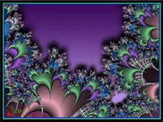 Unidentified Flora  Fractal built by Raven