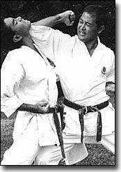 Karate Kata Bunkai - karate forms