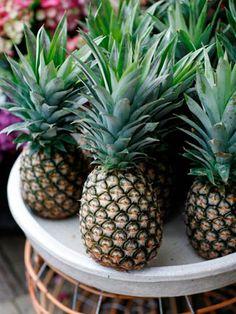 The Boathouse Palm Beach has the right idea Picnic Restaurant, Ocean Sounds, I Love The Beach, Seaside Wedding, Tropical Fruits, Tropical Vibes, Island Girl, Palm Beach, Farmer