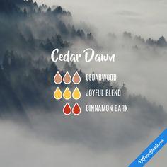Cedar Dawn - Essential Oil Diffuser Blend