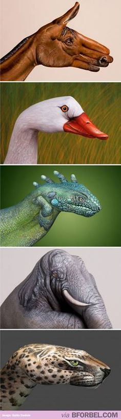 Animals painted on hands....body art