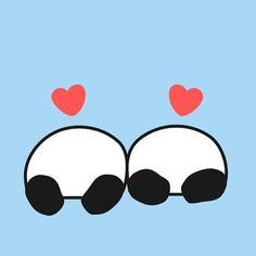 Love butt #panda #pandakuma #love #butt