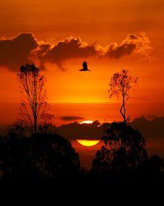 Sunset  - absolutely stunning