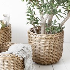 House Doctor Medium Round Basket: These Natural Round Wicker Baskets are a beautiful storage solution from House Doctor in Denmark.  We have a generous size for every storage requirement and their classic good looks are perfect for any room in your house. We also have a rectangular version available.