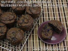 Nut-Free Coconut-Free Paleo Blueberry Muffins Basic Muffin Recipe