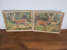 White Tailed Deer Vintage Framed Paint By Number from jessamyjay