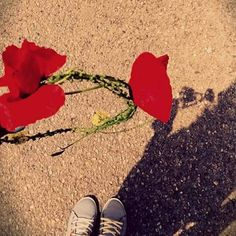 #red #flowers #stefani #prwtomagia
