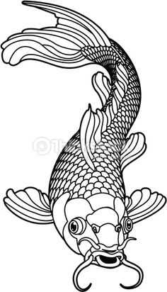 Coloring Pages For Adults Digital Download Of A Koi Fish