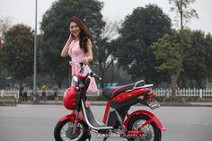 Xe đạp điện Ninja Dibao Eco 5 acquy nhập khẩu chính hãng | Xedien.com.vn