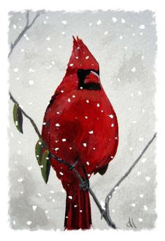 There is just something about birds in the snow.